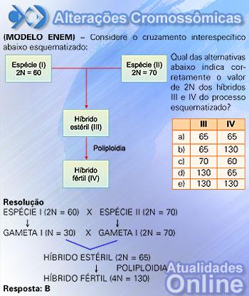 Slide 35